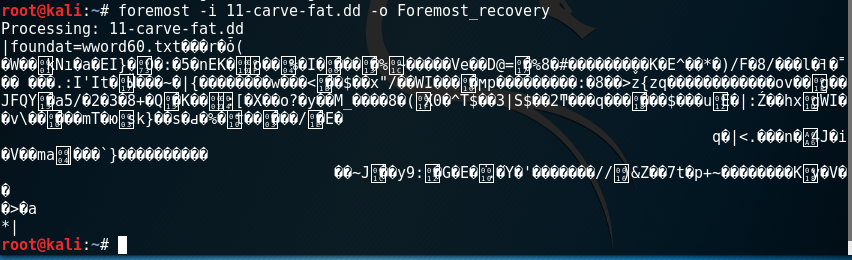 - pic04 foremost execute - File Recovery and Data Carving using Foremost